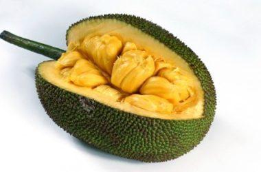Jackfruit: sapore, proprietà e utilizzi di uno strano frutto tropicale