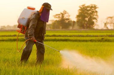 Pesticidi pericolosi per la salute: ecco il nuovo rapporto Greenpeace