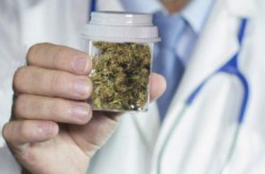 In California cannabis biologica per scopi terapeutici