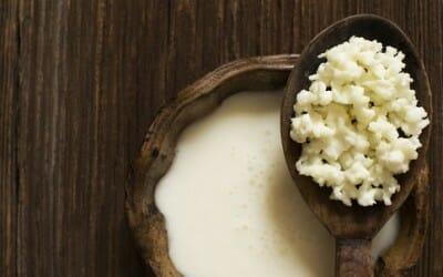 Tutto sui cibi fermentati, quali sono, come mangiarli, i benefici per la salute