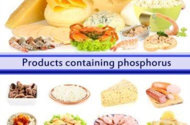 10 alimenti ricchi di fosforo da scoprire