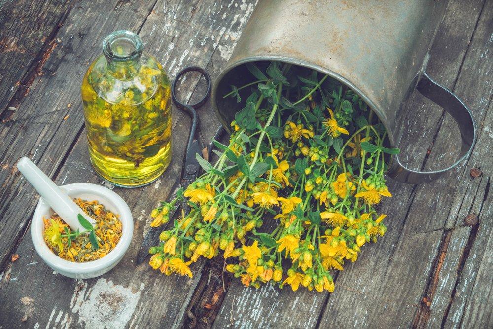 Photo of Olio di iperico: tutti gli utilizzi di questo olio apprezzato per le sue proprietà terapeutiche
