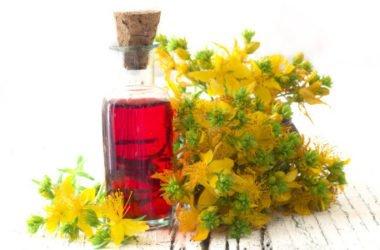 Olio di iperico: tutti gli utilizzi di questo olio apprezzato per le sue proprietà terapeutiche