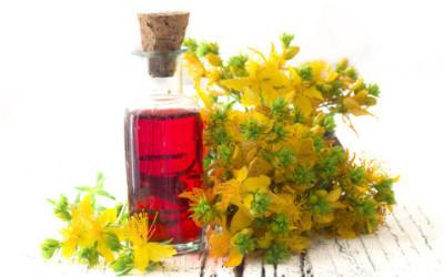 Olio di iperico: proprietà e utilizzi