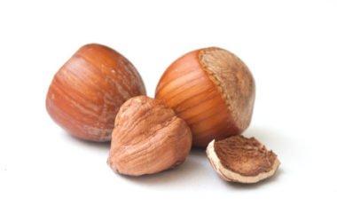 Olio di nocciole: usi, benefici e proprietà