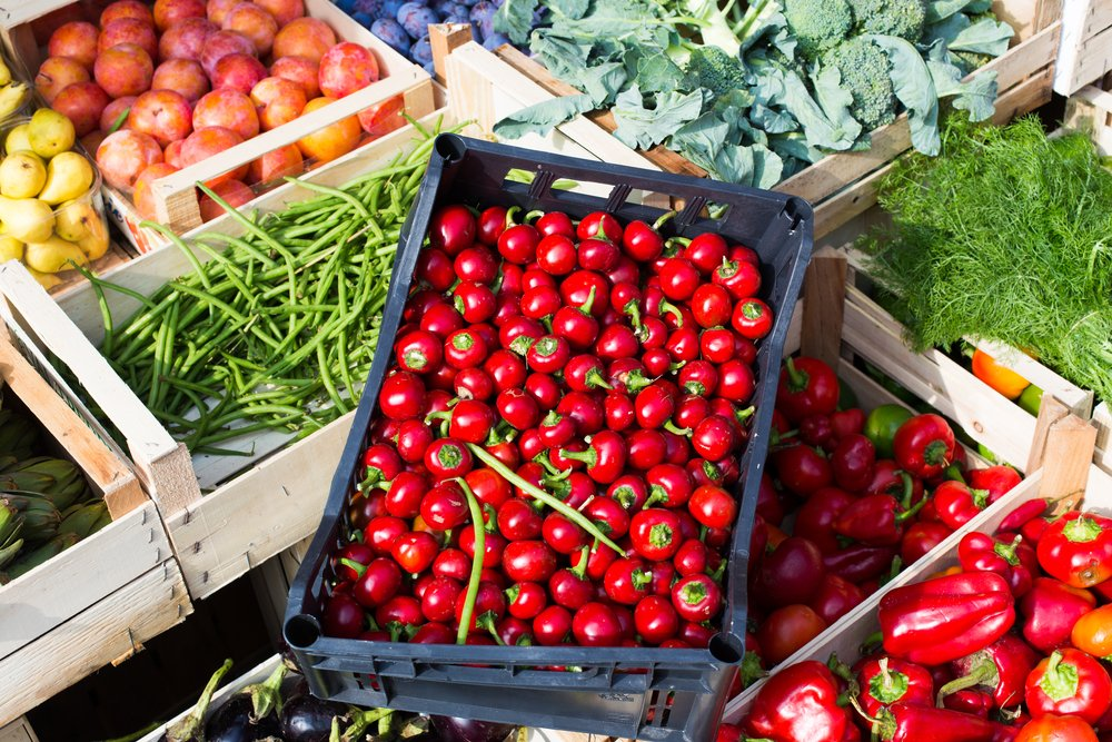 Photo of Scopriamo l'origine, le proprietà e le caratteristiche del cibo biologico