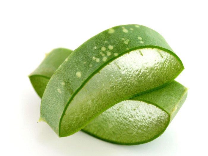 Aloe vera: coagulante e cicatrizzante della pelle