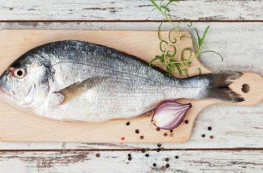 Impariamo a riconoscere il pesce fresco usando i nostri sensi, attenzione ad odore, colore, tatto, occhio e aspetto del corpo