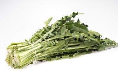 Proprietà della cicoria: ricette ed utilizzi in cucina