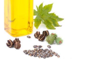 Guida all'olio di ricino, scopriamone insieme i benefici per capelli e cosmesi ma anche le controindicazioni