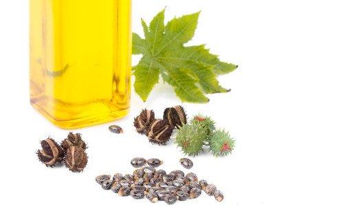 Photo of Guida all'olio di ricino, scopriamone insieme i benefici per capelli e cosmesi ma anche le controindicazioni