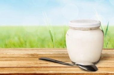Lo yogurt fa bene? Proprietà, benefici e ricette