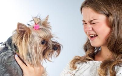 Come addestrare un cane a non mordere i bambini
