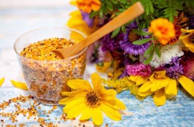 Tutto sul polline, dai valori nutrizionali alle proprietà e gli usi nelle terapie naturali