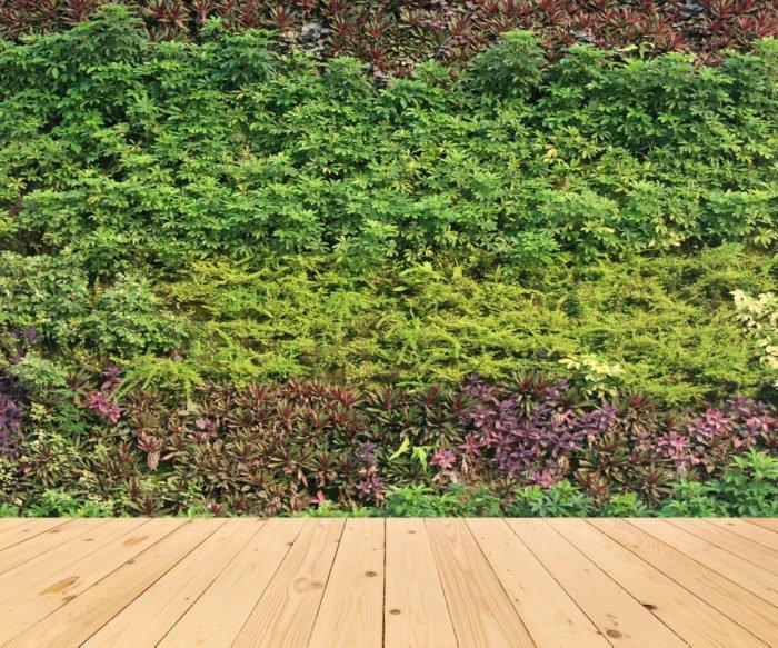 Cosa un giardino verticale tecniche e benefici dei muri vegetali in citt tuttogreen - Giardini verticali interni ...