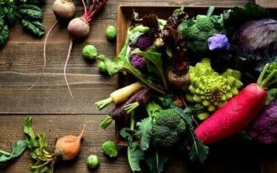I lavori dell'orto di dicembre: cosa seminare, raccogliere e potare