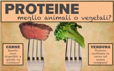 Proteine animali e vegetali. Quali le migliori e più complete?