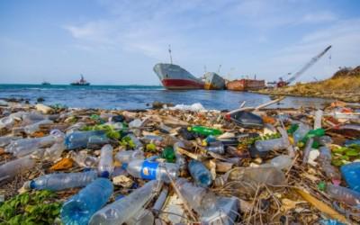 Detriti di plastica: sono veramente dappertutto!