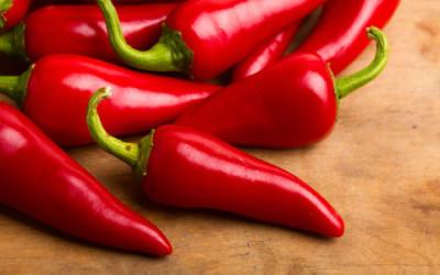 Perchè è piccante il peperoncino? Grazie alla capsaicina…