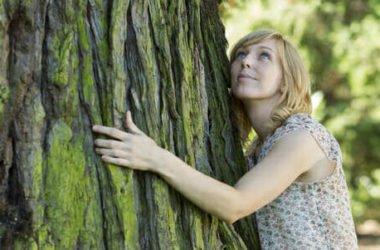 Abbracciare gli alberi: scopriamo la silvoterapia