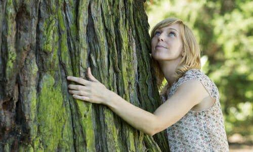 Photo of Abbracciare gli alberi: scopriamo la silvoterapia