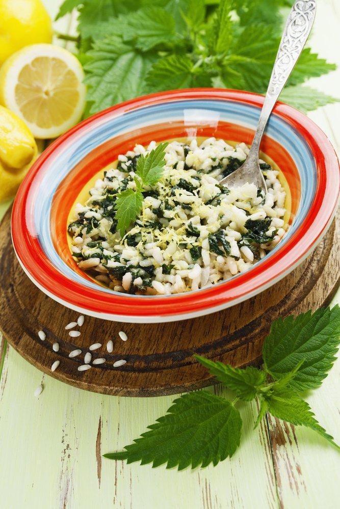 Photo of Il risotto alle ortiche, un piatto leggero, salutare e nutriente: la ricetta facile