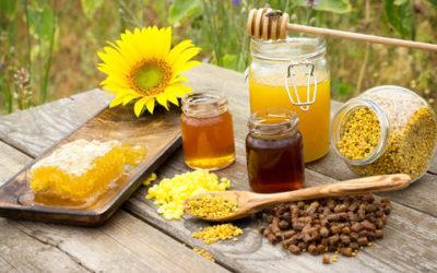 Propoli proprietà e utilizzo nelle terapie naturali