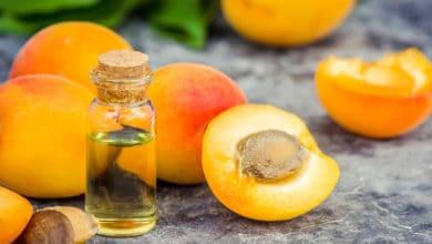 Photo of Olio di albicocca: emolliente e antinfiammatorio per la pelle, si usa anche in cucina