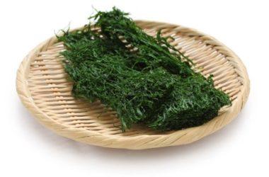 Guida all'Alga nori, scopriamone i benefici, le proprietà e usi in cucina con tante ricette