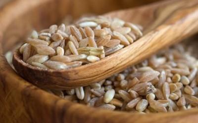 Farina di farro: proprietà e caratteristiche nutrizionali