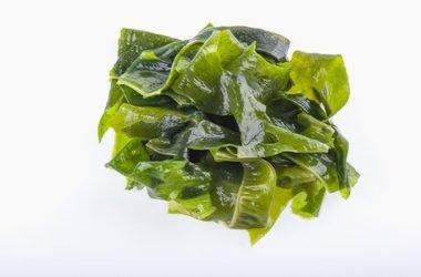 Alla scoperta dell'alga kombu, uno degli alimenti più interessanti della tradizione giapponese