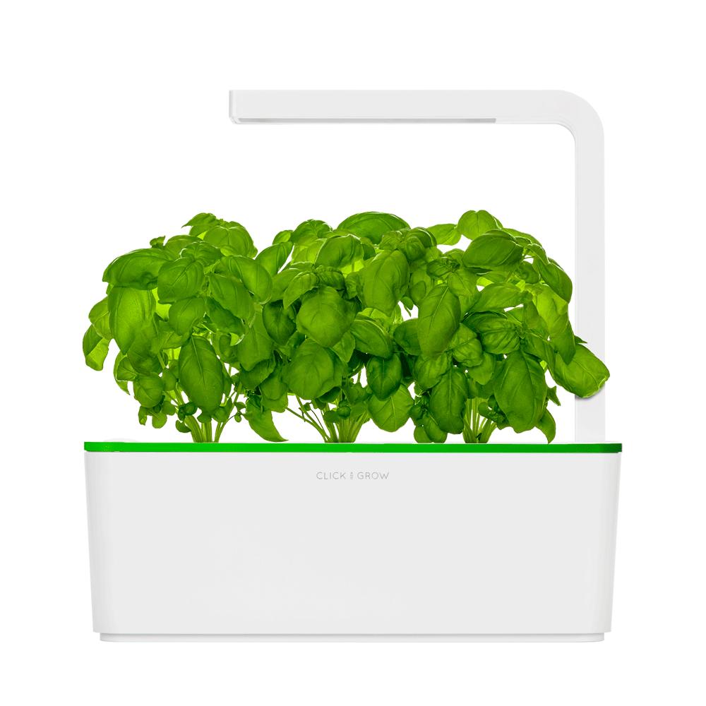 Photo of Click And Grow: basta un click e la pianta cresce