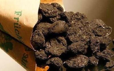 Carbonizzazione idrotermale: lo smaltimento ecocompatibile dei rifiuti organici