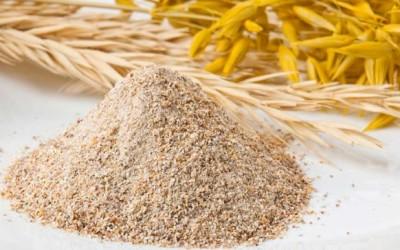 Farina di frumento integrale: proprietà e benefici