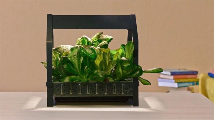 Kit di coltivazione idroponica ikea verdura fresca fai da te
