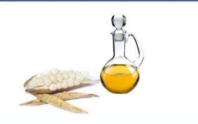 Usi, benefici e proprietà dell'olio di cotone