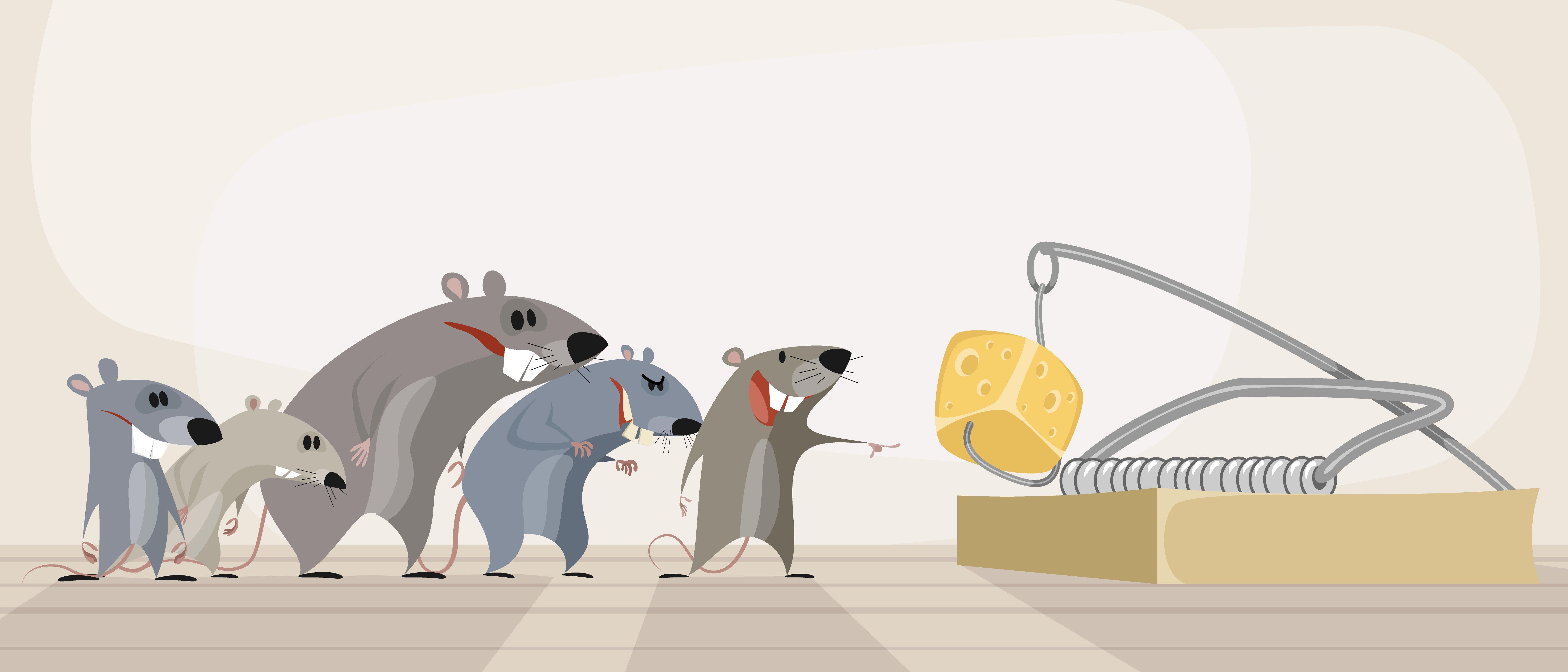Photo of Tutti i trucchi per allontanare i topi in modo naturale e senza ucciderli