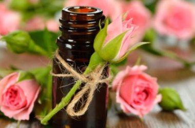 Tutte le proprietà dell'olio essenziale di rosa e i suoi utilizzi principali