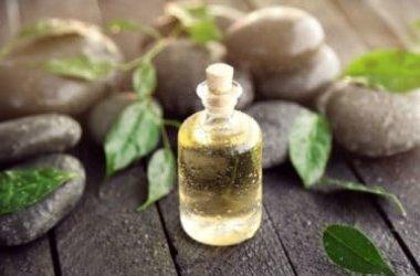 Proprietà e utilizzi dell'olio essenziale di melaleuca, noto anche come di tea tree oil: la guida pratica