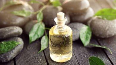 Photo of Proprietà e utilizzi dell'olio essenziale di melaleuca, noto anche come di tea tree oil: la guida pratica