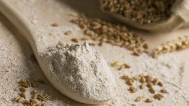 Photo of La farina di segale: caratteristiche nutrizionali e utilizzi di una farina poco diffusa in Italia