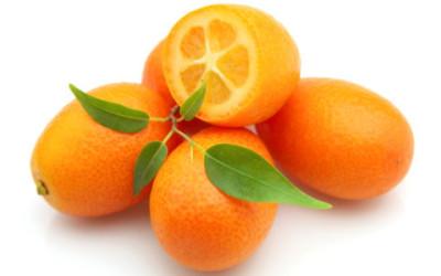 Proprietà e benefici del kumquat o mandarino cinese
