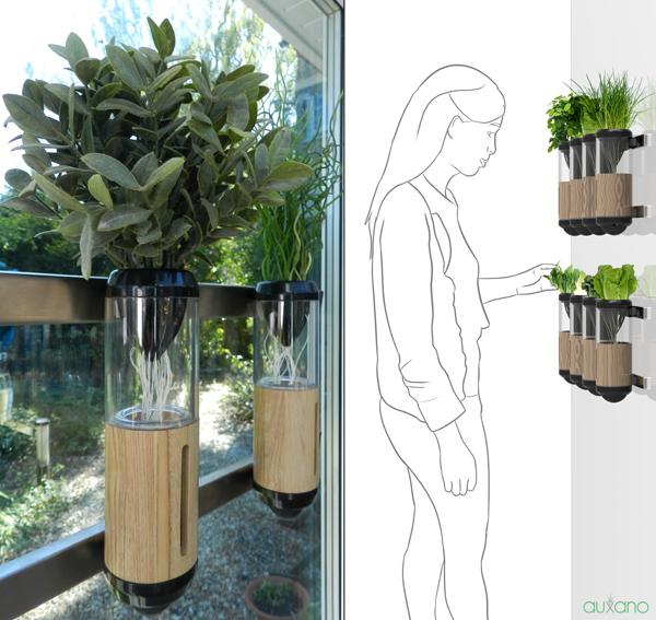 orto in casa: Auxano, il mini-giardino idroponico