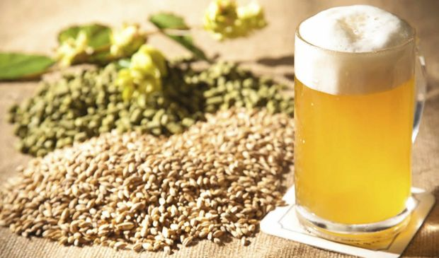 Photo of Birra biologica: dove trovare le migliori birre