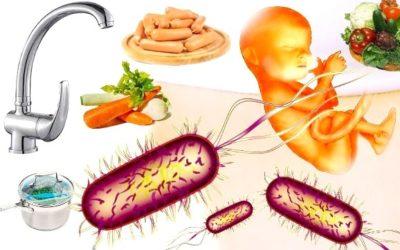 Listeria negli alimenti: un batterio che può uccidere