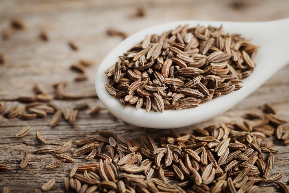 Photo of Alla scoperta dei semi di carvi, noti anche come cumino dei prati o cumino selvatico