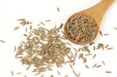 Alla scoperta dei semi di carvi, noti anche come cumino dei prati o cumino selvatico