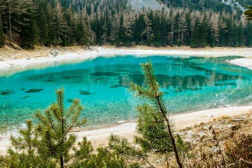 Photo of Il Lago Verde: un parco sommerso dall'acqua in Austria