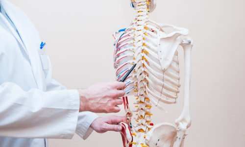 Photo of Quali sono le cause e i migliori rimedi naturali per il mal di schiena?