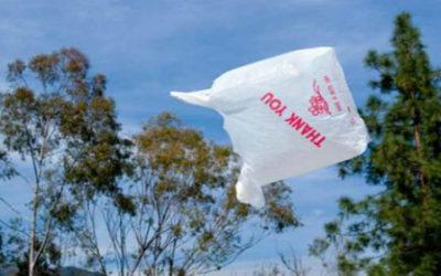 Illegali metà dei sacchetti in bioplastica che circolano in Italia